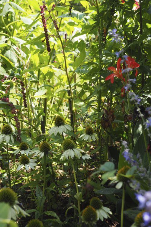 花ギフト|フラワーギフト|誕生日 花|カノシェ話題|スタンド花|ウエディングブーケ|花束|花屋|P8130118