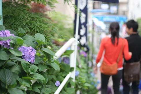 花ギフト フラワーギフト 誕生日 花 カノシェ話題 スタンド花 ウエディングブーケ 花束 花屋 カップル