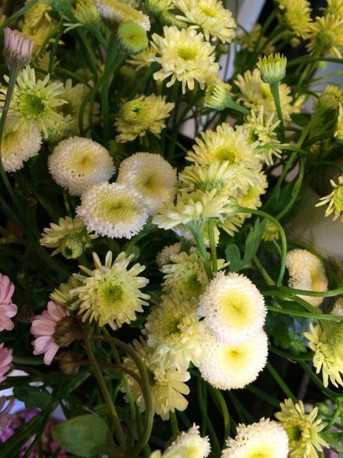 花ギフト|フラワーギフト|誕生日 花|カノシェ話題|スタンド花|ウエディングブーケ|花束|花屋|IMG_4223