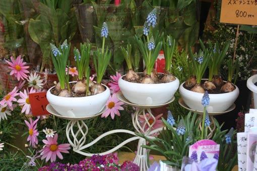 花ギフト|フラワーギフト|誕生日 花|カノシェ話題|スタンド花|ウエディングブーケ|花束|花屋|musukari
