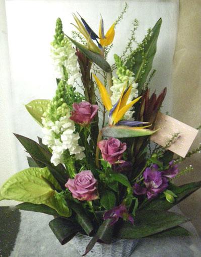 花ギフト|フラワーギフト|誕生日 花|カノシェ話題|スタンド花|ウエディングブーケ|花束|花屋|じゅん ストレチア