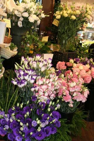 花ギフト|フラワーギフト|誕生日 花|カノシェ話題|スタンド花|ウエディングブーケ|花束|花屋|店内トルコ