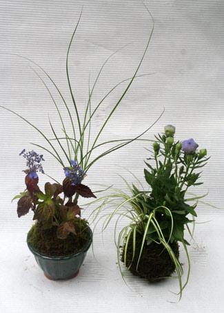 花ギフト|フラワーギフト|誕生日 花|カノシェ話題|スタンド花|ウエディングブーケ|花束|花屋|IMG_3065