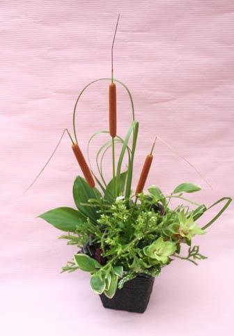 花ギフト|フラワーギフト|誕生日 花|カノシェ話題|スタンド花|ウエディングブーケ|花束|花屋|IMG_8541