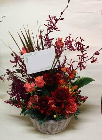 花ギフト|フラワーギフト|誕生日 花|カノシェ話題|スタンド花|ウエディングブーケ|花束|花屋|daria-s