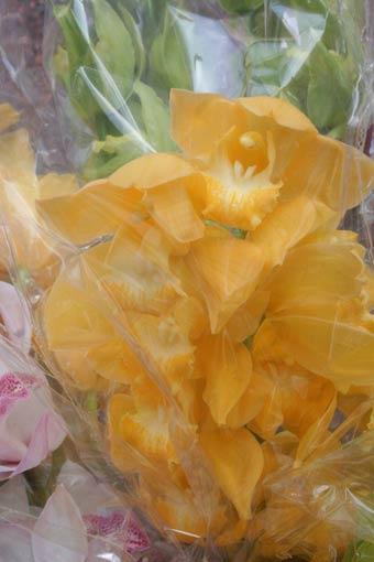 花ギフト|フラワーギフト|誕生日 花|カノシェ話題|スタンド花|ウエディングブーケ|花束|花屋|h3