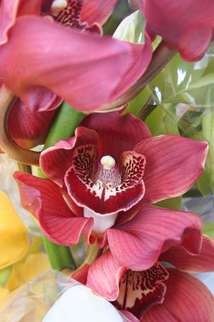 花ギフト|フラワーギフト|誕生日 花|カノシェ話題|スタンド花|ウエディングブーケ|花束|花屋|h4