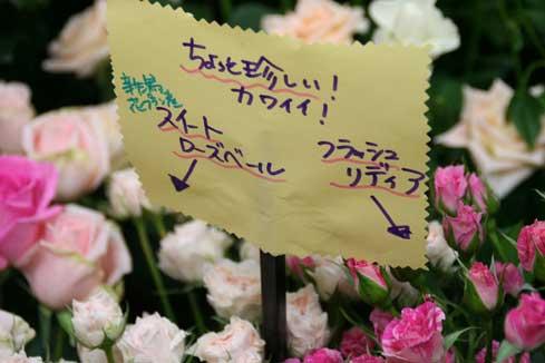 花ギフト|フラワーギフト|誕生日 花|カノシェ話題|スタンド花|ウエディングブーケ|花束|花屋|バラpop