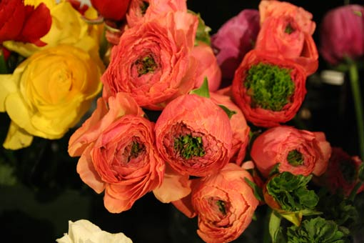 花ギフト|フラワーギフト|誕生日 花|カノシェ話題|スタンド花|ウエディングブーケ|花束|花屋|IMG_6055