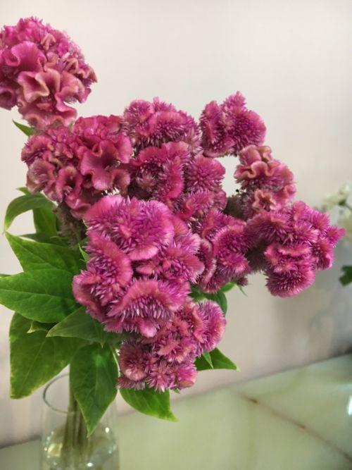花ギフト フラワーギフト 誕生日 花 カノシェ話題 スタンド花 ウエディングブーケ 花束 花屋 IMG_4280
