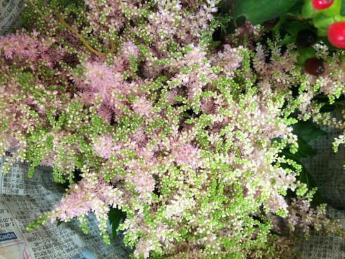 花ギフト|フラワーギフト|誕生日 花|カノシェ話題|スタンド花|ウエディングブーケ|花束|花屋|IMG_5106