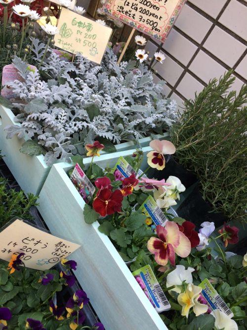 花ギフト フラワーギフト 誕生日 花 カノシェ話題 スタンド花 ウエディングブーケ 花束 花屋 IMG_9040