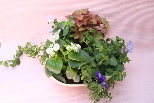 花ギフト|フラワーギフト|誕生日 花|カノシェ話題|スタンド花|ウエディングブーケ|花束|花屋|IMG_0278