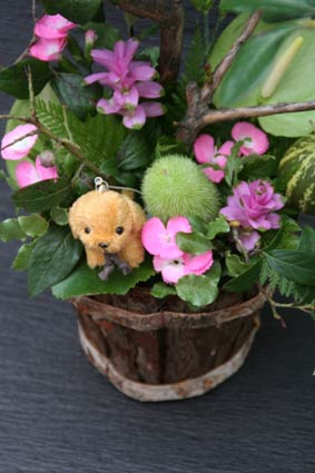 花ギフト|フラワーギフト|誕生日 花|カノシェ話題|スタンド花|ウエディングブーケ|花束|花屋|IMG_8623