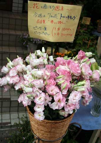 花ギフト|フラワーギフト|誕生日 花|カノシェ話題|スタンド花|ウエディングブーケ|花束|花屋|トルコ かご