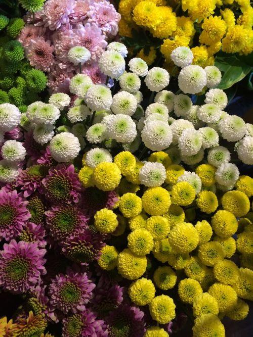 花ギフト|フラワーギフト|誕生日 花|カノシェ話題|スタンド花|ウエディングブーケ|花束|花屋|IMG_3944
