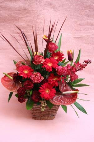 花ギフト|フラワーギフト|誕生日 花|カノシェ話題|スタンド花|ウエディングブーケ|花束|花屋|aka-saya