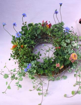 花ギフト|フラワーギフト|誕生日 花|カノシェ話題|スタンド花|ウエディングブーケ|花束|花屋|korenagasan-yose