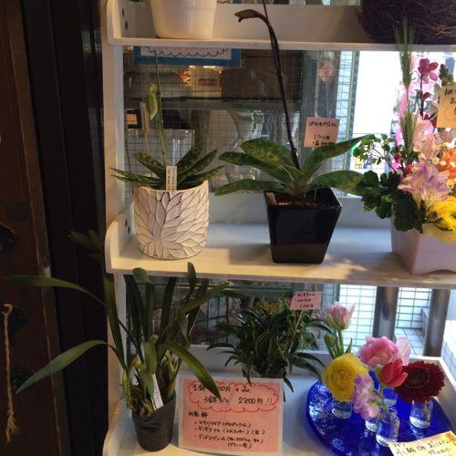 花ギフト|フラワーギフト|誕生日 花|カノシェ話題|スタンド花|ウエディングブーケ|花束|花屋|IMG_9660