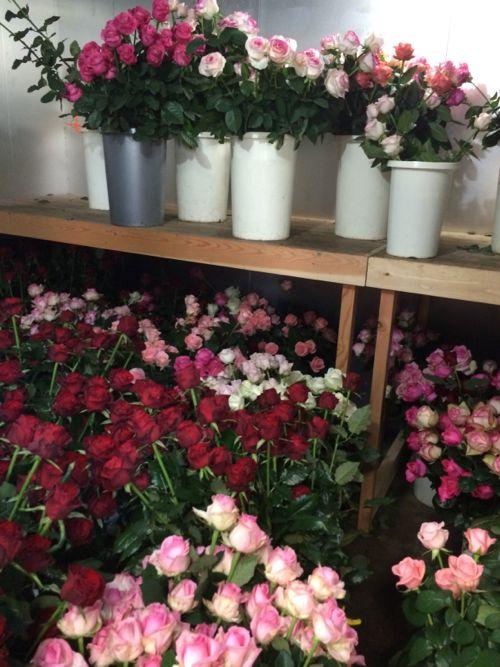 花ギフト|フラワーギフト|誕生日 花|カノシェ話題|スタンド花|ウエディングブーケ|花束|花屋|IMG_7841