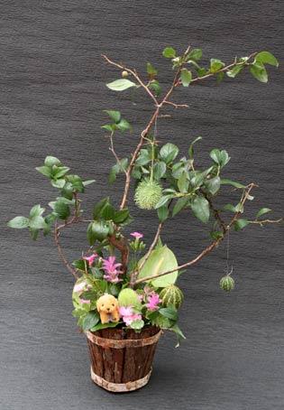 花ギフト|フラワーギフト|誕生日 花|カノシェ話題|スタンド花|ウエディングブーケ|花束|花屋|IMG_8622