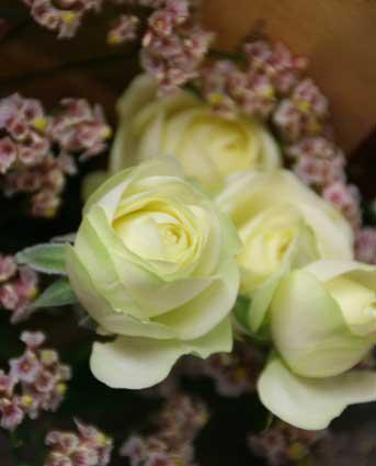 花ギフト|フラワーギフト|誕生日 花|カノシェ話題|スタンド花|ウエディングブーケ|花束|花屋|はなプランさん