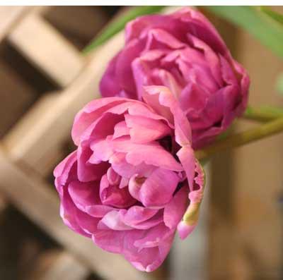 花ギフト|フラワーギフト|誕生日 花|カノシェ話題|スタンド花|ウエディングブーケ|花束|花屋|ブルーダイヤ