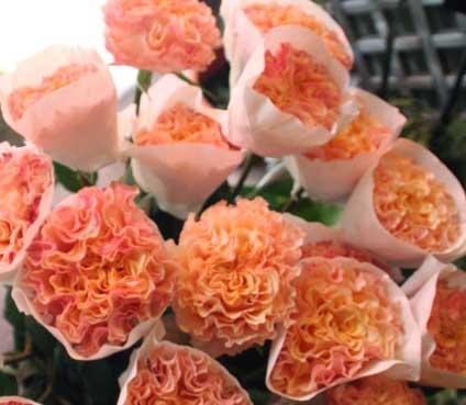 花ギフト|フラワーギフト|誕生日 花|カノシェ話題|スタンド花|ウエディングブーケ|花束|花屋|カンパネラ 紙