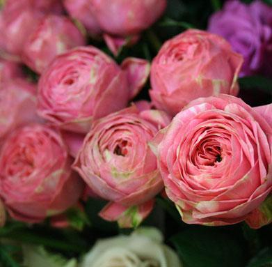 花ギフト|フラワーギフト|誕生日 花|カノシェ話題|スタンド花|ウエディングブーケ|花束|花屋|p-ranan