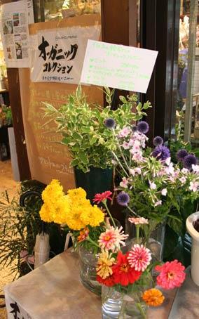 花ギフト|フラワーギフト|誕生日 花|カノシェ話題|スタンド花|ウエディングブーケ|花束|花屋|suzukisanco