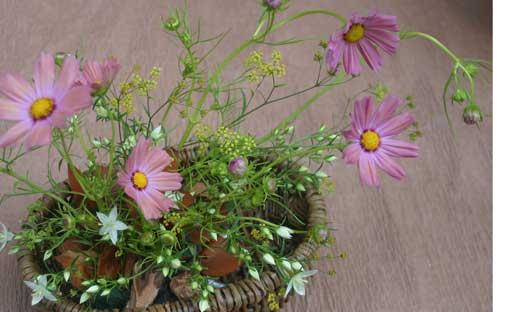 花ギフト|フラワーギフト|誕生日 花|カノシェ話題|スタンド花|ウエディングブーケ|花束|花屋|コスモス2