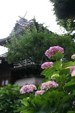 花ギフト フラワーギフト 誕生日 花 カノシェ話題 スタンド花 ウエディングブーケ 花束 花屋 寺
