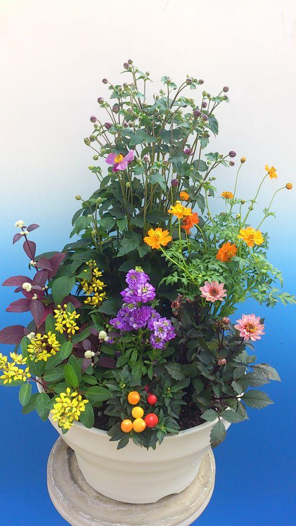 花ギフト|フラワーギフト|誕生日 花|カノシェ話題|スタンド花|ウエディングブーケ|花束|花屋|00035497