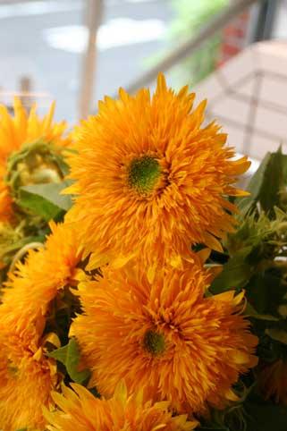 花ギフト|フラワーギフト|誕生日 花|カノシェ話題|スタンド花|ウエディングブーケ|花束|花屋|東北八重