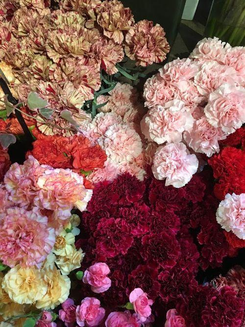 花ギフト|フラワーギフト|誕生日 花|カノシェ話題|スタンド花|ウエディングブーケ|花束|花屋|IMG_1577