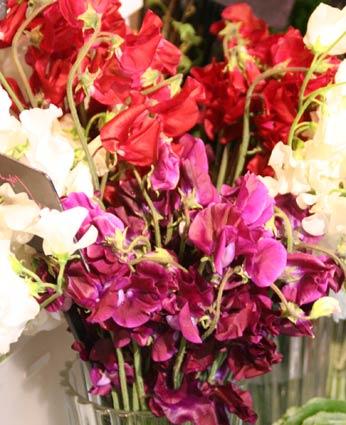 花ギフト|フラワーギフト|誕生日 花|カノシェ話題|スタンド花|ウエディングブーケ|花束|花屋|IMG_6171