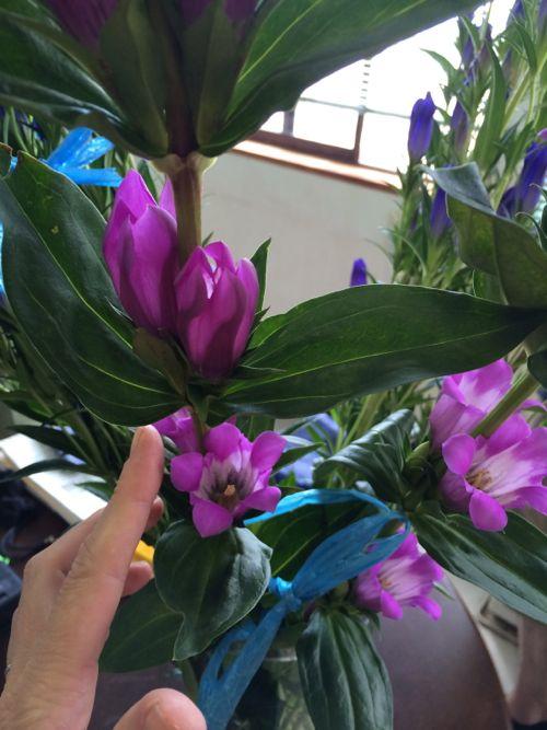 花ギフト|フラワーギフト|誕生日 花|カノシェ話題|スタンド花|ウエディングブーケ|花束|花屋|IMG_6665