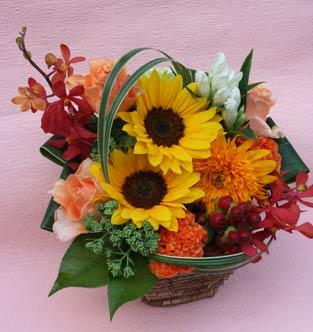 花ギフト|フラワーギフト|誕生日 花|カノシェ話題|スタンド花|ウエディングブーケ|花束|花屋|2012_summer_a_himawari2