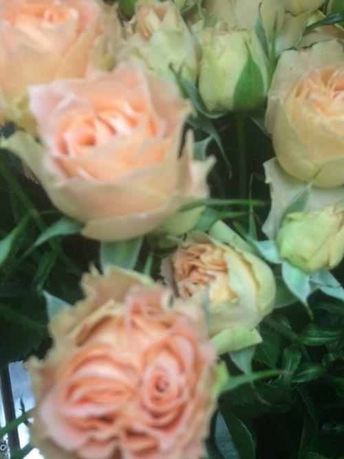 花ギフト|フラワーギフト|誕生日 花|カノシェ話題|スタンド花|ウエディングブーケ|花束|花屋|IMG_8105