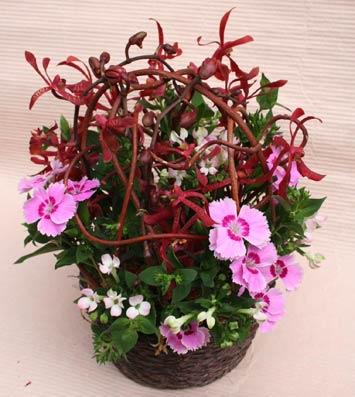 花ギフト フラワーギフト 誕生日 花 カノシェ話題 スタンド花 ウエディングブーケ 花束 花屋 チェさんアランセラ