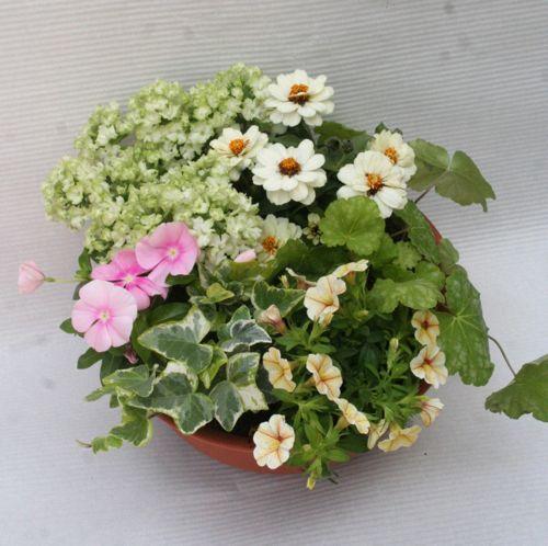 花ギフト|フラワーギフト|誕生日 花|カノシェ話題|スタンド花|ウエディングブーケ|花束|花屋|はばさん