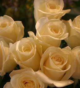 花ギフト|フラワーギフト|誕生日 花|カノシェ話題|スタンド花|ウエディングブーケ|花束|花屋|イグロ