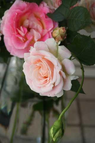 花ギフト|フラワーギフト|誕生日 花|カノシェ話題|スタンド花|ウエディングブーケ|花束|花屋|d17cccd2