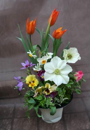 花ギフト|フラワーギフト|誕生日 花|カノシェ話題|スタンド花|ウエディングブーケ|花束|花屋|IMG_6069