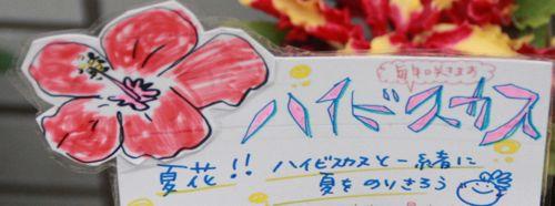 花ギフト|フラワーギフト|誕生日 花|カノシェ話題|スタンド花|ウエディングブーケ|花束|花屋|IMG_3841