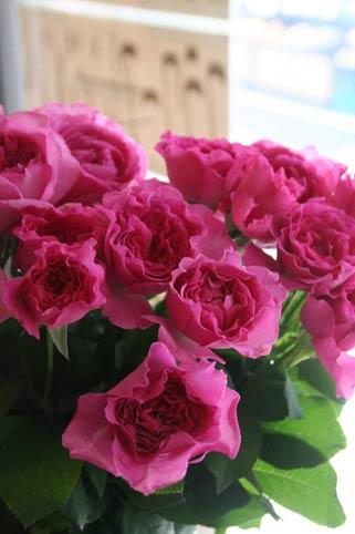 花ギフト|フラワーギフト|誕生日 花|カノシェ話題|スタンド花|ウエディングブーケ|花束|花屋|IMG_0950