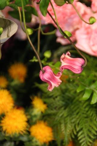 花ギフト|フラワーギフト|誕生日 花|カノシェ話題|スタンド花|ウエディングブーケ|花束|花屋|IMG_8267