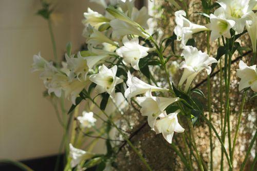 花ギフト|フラワーギフト|誕生日 花|カノシェ話題|スタンド花|ウエディングブーケ|花束|花屋|P6103032