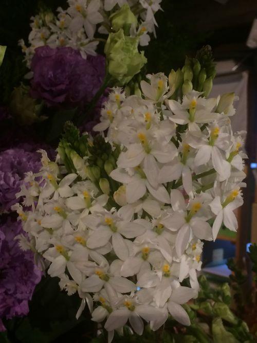 花ギフト|フラワーギフト|誕生日 花|カノシェ話題|スタンド花|ウエディングブーケ|花束|花屋|IMG_8441