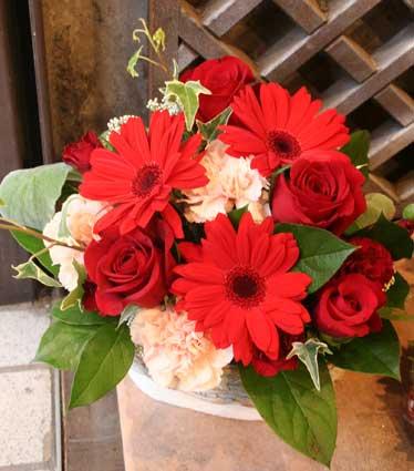 花ギフト|フラワーギフト|誕生日 花|カノシェ話題|スタンド花|ウエディングブーケ|花束|花屋|赤ガーベラ